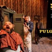 TME PULGARCITO Teatro Paraiso (1)